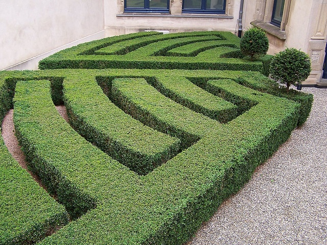 Hedge Art by briant87, via Flickr