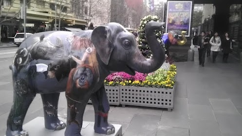 50 painted Mali elephants are on display in Melbourne CBD as part of Melbourne Zoo birthday celebrations.  Here's one of them.