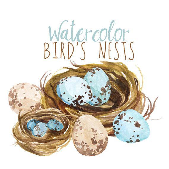 Peinture aquarelle printemps Clipart, nid Pâques Clip Art oiseau, artistique oeuf, aquarelle Clip Art, pince à ressort art, Illustration de nid