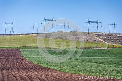 Crop field various colors with high voltage electric power lines. Agricultural landscape.