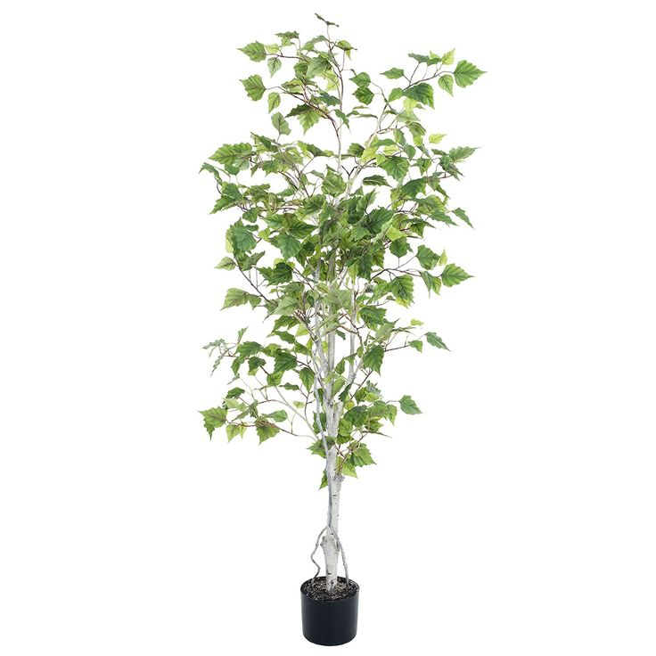 Pure Garden Birch Artificial Tree, 5' >>> You can find out more details at the link of the image.