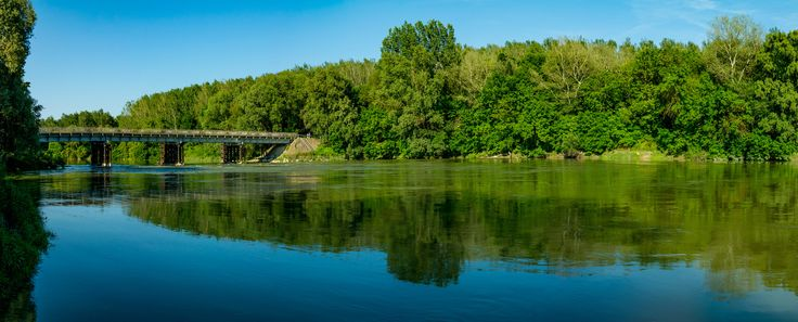 Bridge into the Forest - Bridge leading into the forest on one of the islands of the Danube in Hungary.