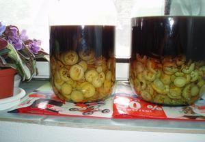 Ořechy se trhají 24. června, aby neměly tvrdé skořápky.Ořechy nakrájíme na tenké plátky, přidáme sko...