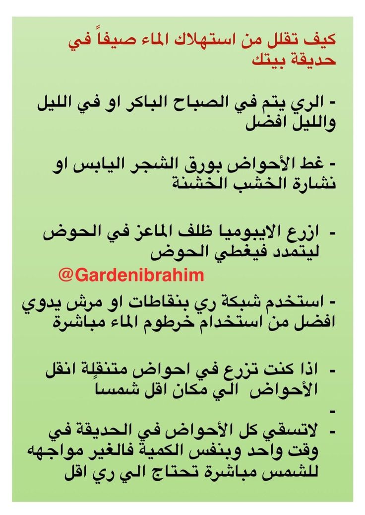 Pin By Meral On Arabic Quotes Arabic Quotes Quotes Plant Decor