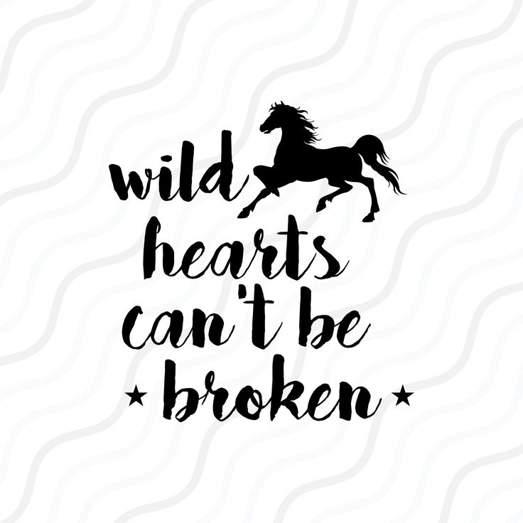 wild hearts cant be broken mp4 download