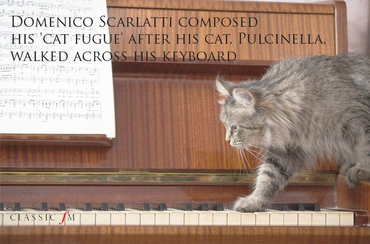 Domenico Scarlatti composed his 'cat fugue' after his cat, Pulcinella, walked across his keyboard.