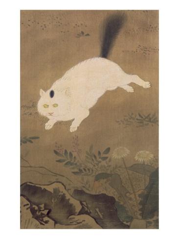 A White Cat, Illustration from 'The Kokka' Magazine, Japan, 1896-7