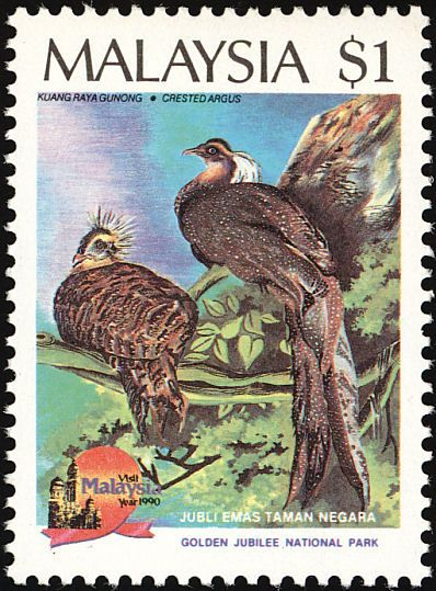 Crested argus stamp from Malaysia