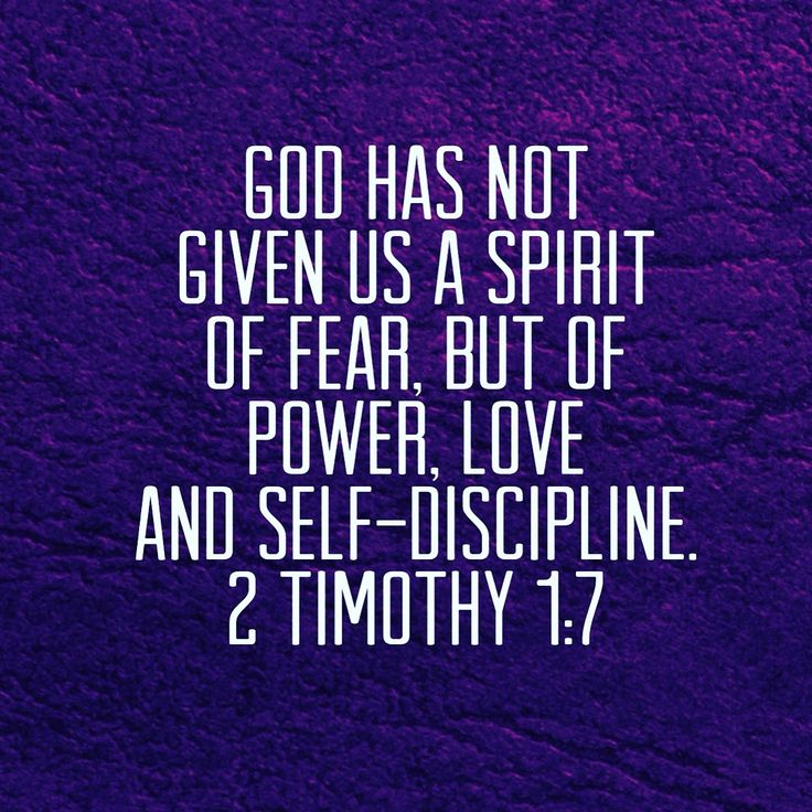 Best 25 2 timothy 3 ideas on pinterest 2 timothy 1 timothy 2 best 25 2 timothy 3 ideas on pinterest 2 timothy 1 timothy 2 and 2 timothy 4 3 negle Image collections