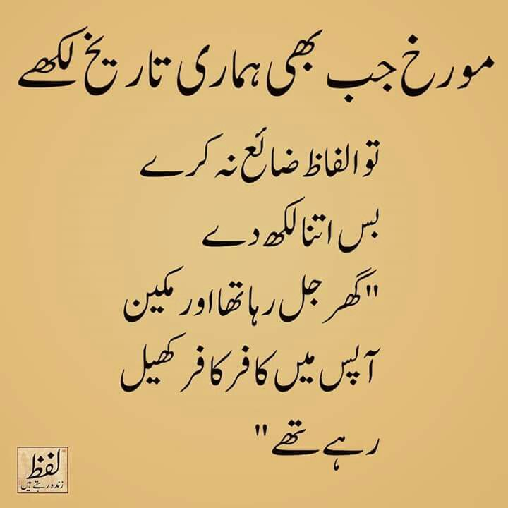 Pin By Shadows On Urdu Quotes T Urdu Quotes Wisdom