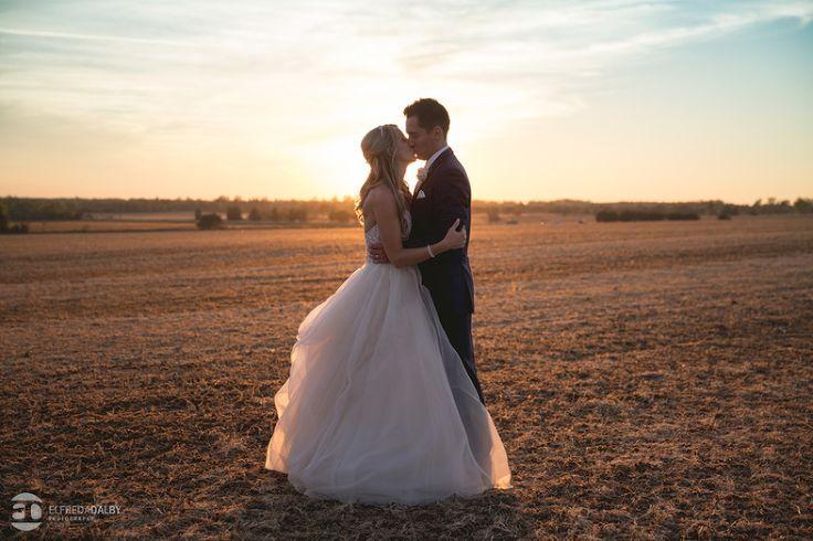 ROCKWOOD CONSERVATION AREA – TORONTO WEDDING PHOTOGRAPHERS | TARYN & ARNOLD