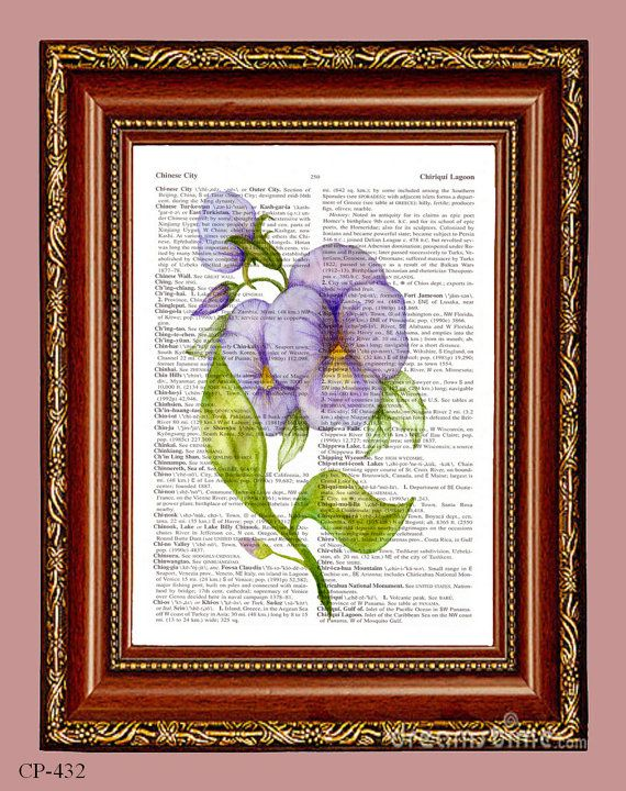 Lavender Petunia Flowers Dictionary Page Art Book by CocoPuffsArt, $8.50