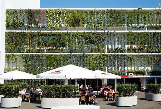 fachada verde inglaterra brise solae                                                                                                                            Mais