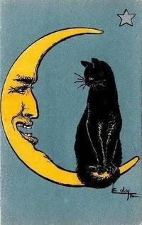 vintage postcard, crescent moon & black cat
