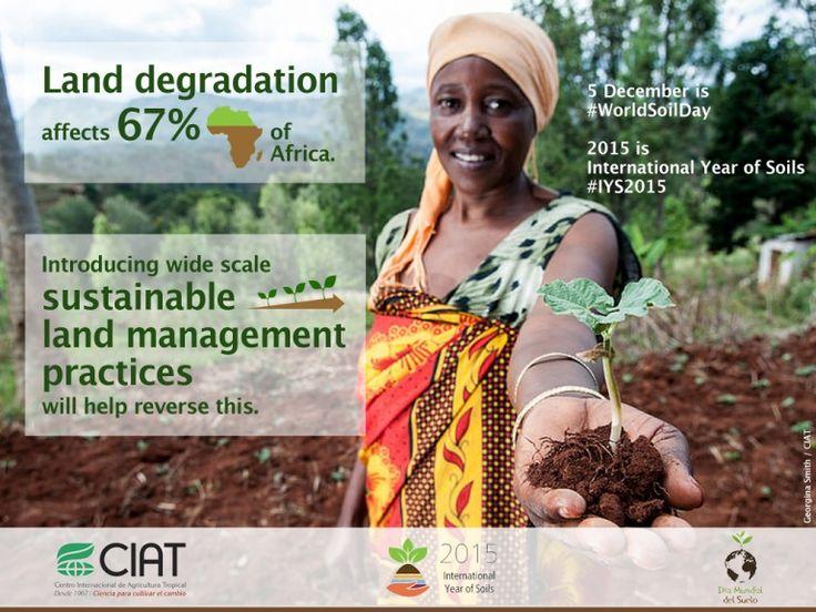 #WorldSoilDay / Land degradation affects 67 per cent of Africa.
