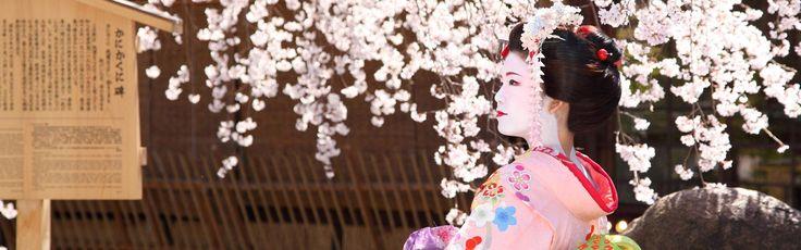 京都舞妓体験処 心-花雫-