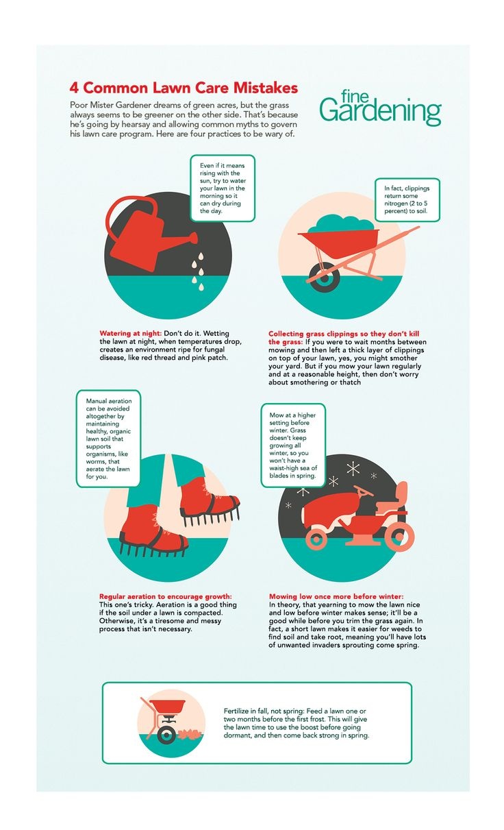 15 best lawn care made cheap u0026 easy images on pinterest lawn