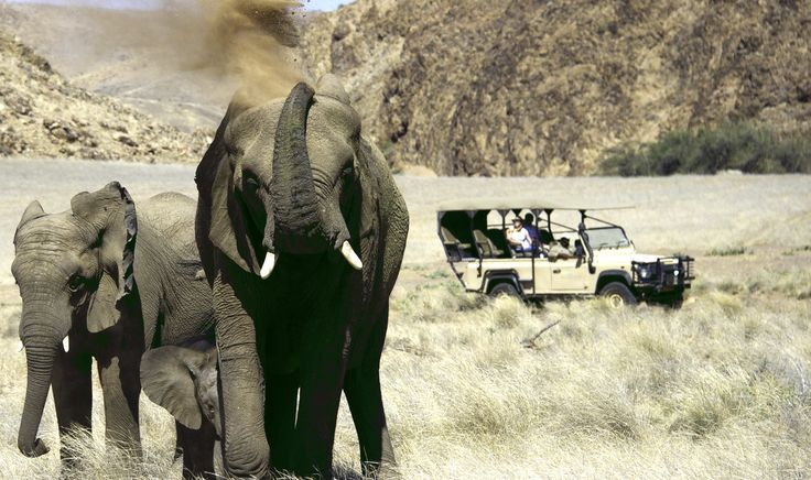 The Best Namibia Safaris Tailormade for you by Taga Safaris - The Experts in African Travel