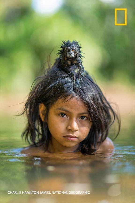 Un mono tomando un baño sobre mi cabeza!!!