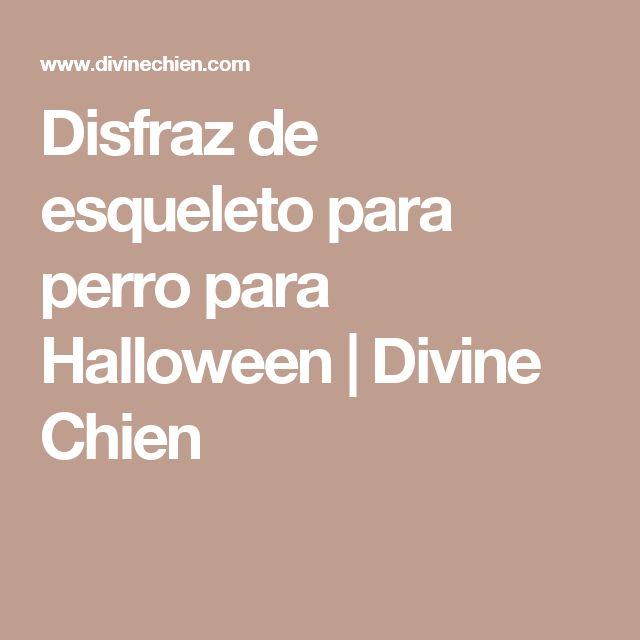 Disfraz de esqueleto para perro para Halloween | Divine Chien