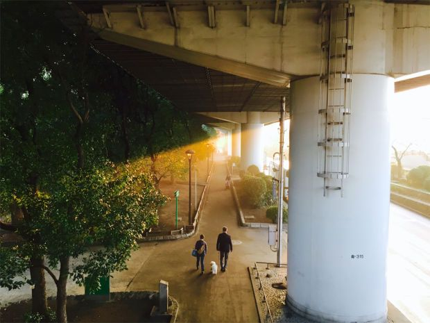 50  Incredible iPhone 6 Photos Curated By Apple - Airows