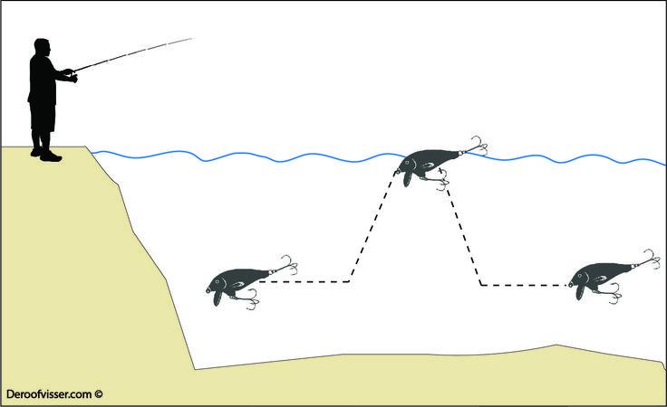 Kunstaas pluggen leveren mooie vangsten op. Je kan er goed mee snoekvissen, baarsvissen en snoekbaars vissen. Maar welke techniek kan je gebruiken voor het kunstaas vissen met pluggen? De illustratie laat zien hoe je door even te stoppen met binnenhalen een drijvende plug naar de oppervlakte kan laten drijven, om hem vervolgens weer binnen te halen. Wil je meer tips over kunstaas vissen of het vissen op roofvis in het algemeen? Bezoek dan onze website eens https://www.deroofvisser.com