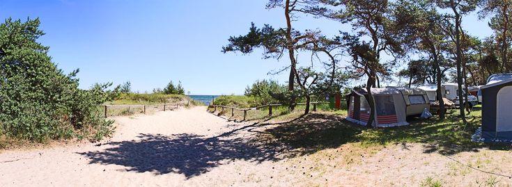 """Stellplätze › Campingplatz, Ferienhäuser und Wohnwagen im Norden der Insel Rügen ‹ Camping an der Ostsee – Camping auf Rügen – Campingplatz """"Drewoldke"""""""