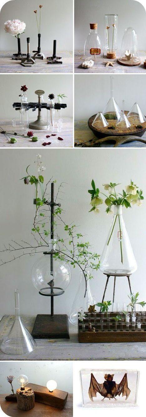 Laboratory Room Design: 24 Best Lab/Chemistry Themed Decor Images On Pinterest