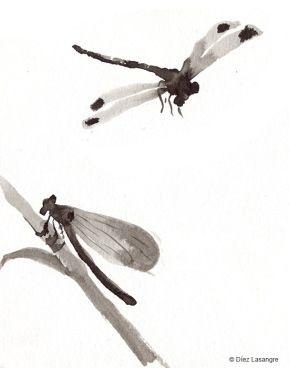 Improvisaciones con tinta china y agua, al dictado de la memoria y la imaginación.
