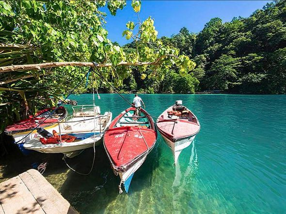 Red hummingbirds, golden beaches and glowing waters: A walk on Jamaica's wild side