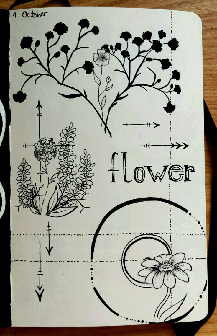 Inktober Day 1 - Minimalistic flowers I know I am late but I'm working on getting back on track with my drawings while listening to some awesome music :) Tools: Moleskine Sketchbook, Mechanical pencil, Uni Pin Fine Line