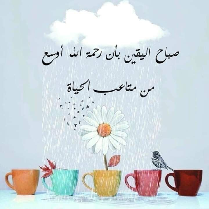 Pin By Aseel On صباح مساء Morning Greeting Morning Words Beautiful Morning