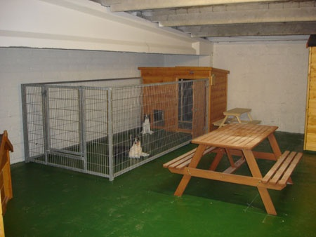 dog kennel run with dog house