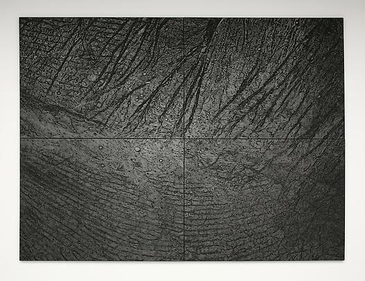 Peau de graphite, Giuseppe Penone, 2003-2008