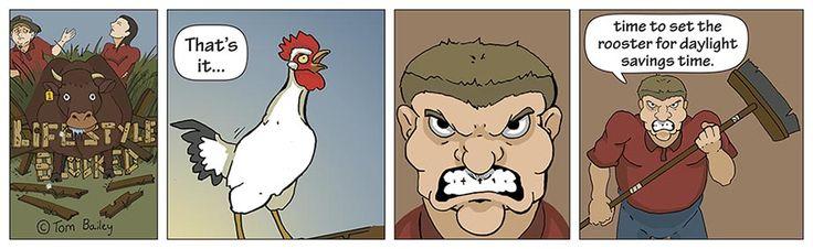 Lifestyle Blocked #040 | Daylight Savings | #cartoon #rooster #mornings