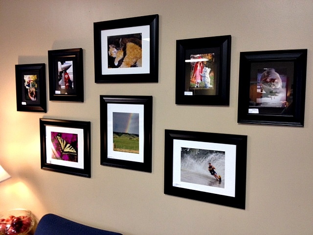 Here is a picture of the 2012 Photo Contest winners up in our lobby! Come check them out!!