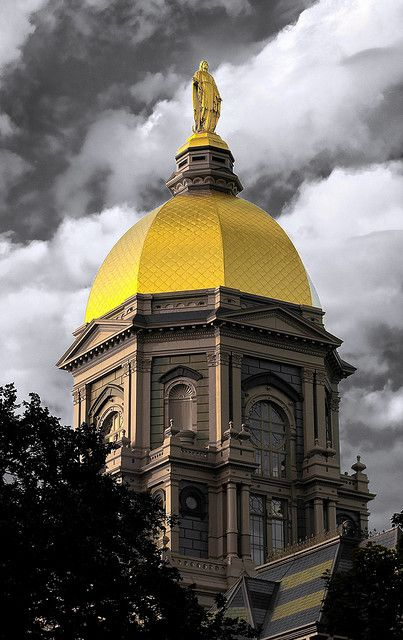 Golden Dome by longbowsnyper