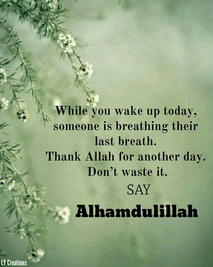 529 best alhamdulillah images on pinterest alhamdulillah allah resultado de imagem para alhamdulillah for another day quotes thecheapjerseys Choice Image