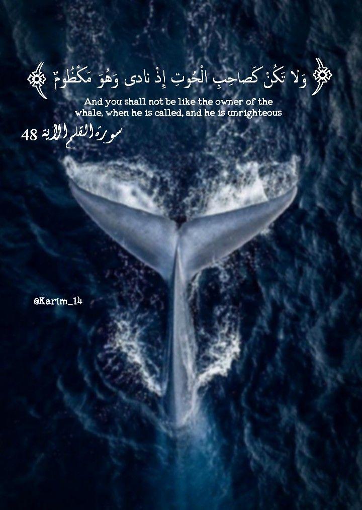 القرأن الكريم Qur An Arabic Art Islamic Quotes Sketches