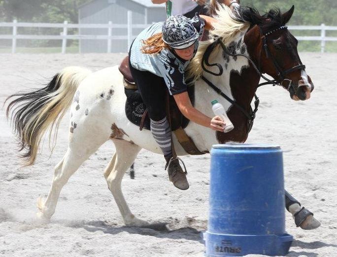 38 Best Aristotle Images On Pinterest: 38 Best Gymkhana Horse Games Images On Pinterest