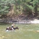 MTA's Deanne Scanlan saddles up for Mexican river horse ride