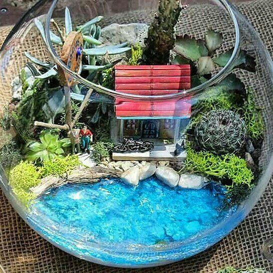 Modern  Unique Glass Terrarium Ideas for Plant  Reptiles Glass
