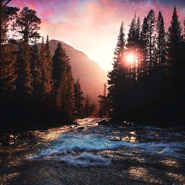 Pacific Crest Trail, CA, USA | Brandon Sharpe