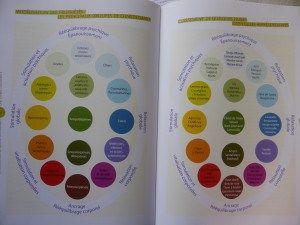 diagramme-aroma-energie