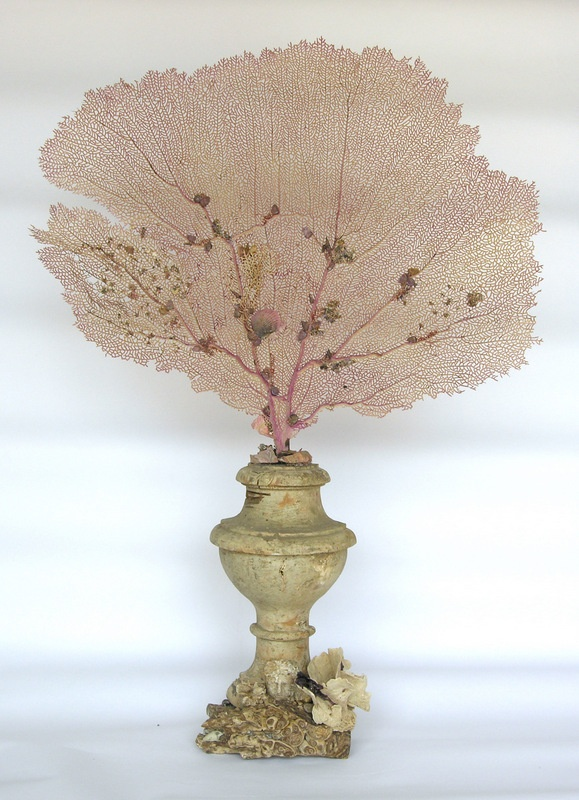 18th century Italian candlestick decorated with sea fan on a leopard agate mineral with brain coral flowers.