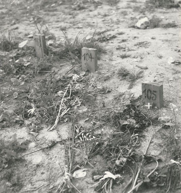 De begravelsesplads ved Ryvangens Kaserne, som tyskene anvendte til henrettede og andre. De enkelte grave er markeret med træpæle med numre.