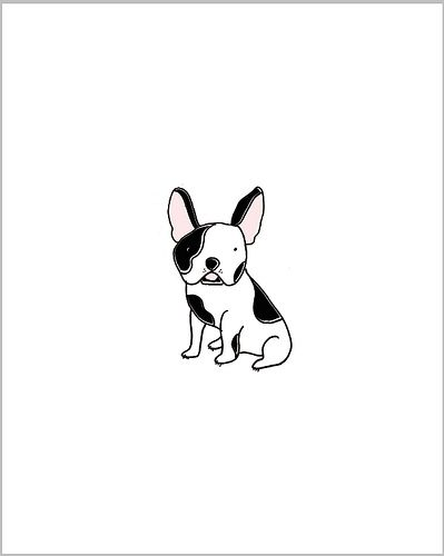 French Bulldog, illustration, by Lisa Marie Norton.