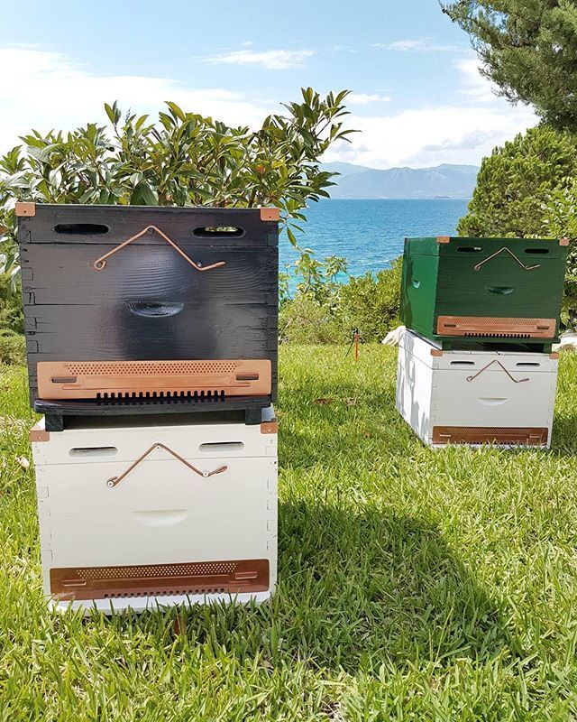 Home in a Home Beehive boxes by the sea! Which one is your favorite?  For more details, visit link in bio!  #homeinahome #home #handcraft #handmade #etsy #etsyshop #beehive #wood #woodenbox #honey #storage #storagebox #tray #toy #toybox #stool #bedside #bedsidetable #decoration #homedecor #decorating #beeshome #allinone #furniture #interiordesign #interiordecor #musthave #shoponline #minimal #decor