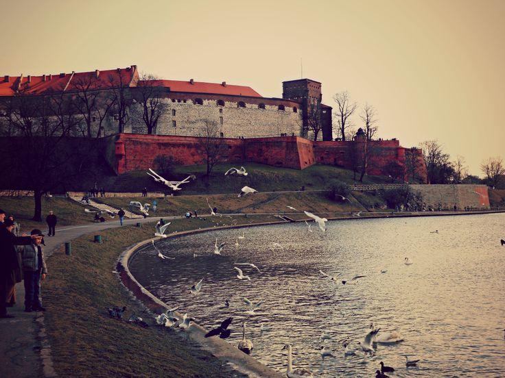 Vistola e Castello del Wawel.