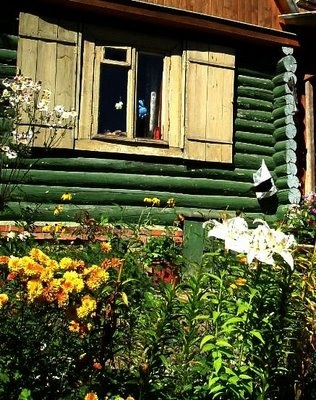 My friends #garden in #Russia where we played as kids